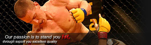 Boxing Equipments & Martial Arts Equipments by Haider Pak